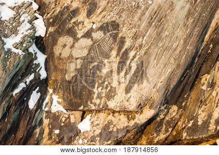Winter, day. In the frame is a primitive rock carvings of primitive man. The Age of the Neolithic. Tomskaya pisanitsa, museum, reserve. Kemerovo, Siberia, Russia.