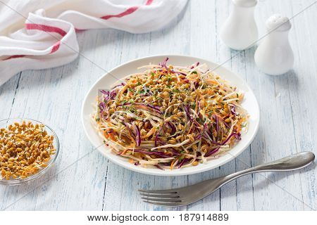 Salad Cole slaw with red cabbage and wheat sprouts. Healthy detox food. On a blue wooden background
