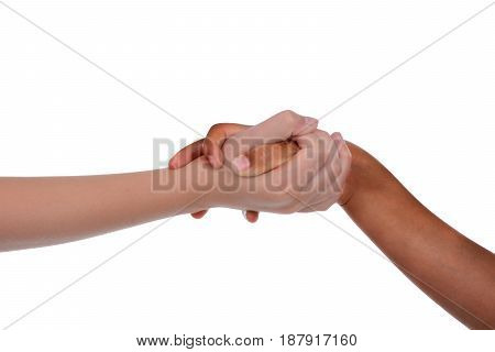 young children holding hands isolated white background
