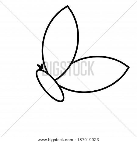 butterfly icon over white background. vector illustration