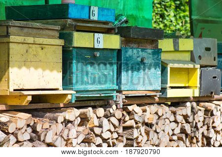 Huts For Bees