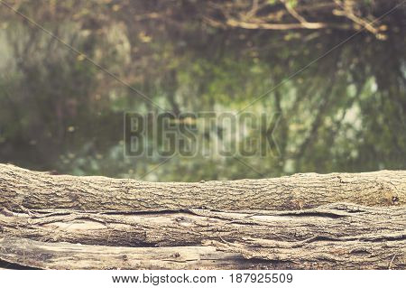 Old logs with bark on a background of the lake