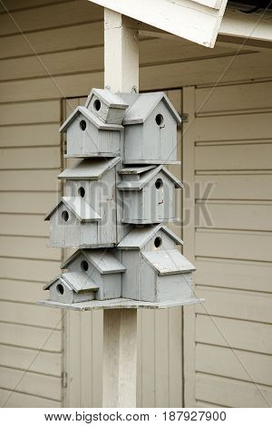 Birdhouses stack in one birdhouse in front of the house
