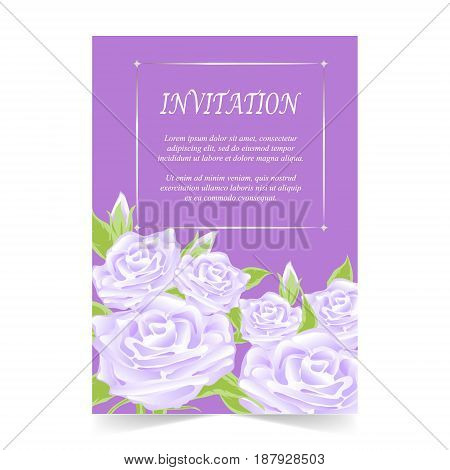 Invitation card wedding card with rose on purple background