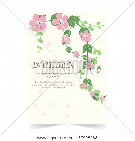 Invitation card wedding card with Hibiscus flowers in spring time on white background
