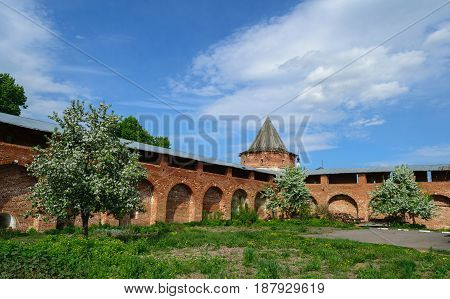 Spring landscape with a view of flowering trees in the background of the ancient walls of the Kremlin in city Zaraysk