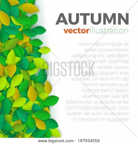 Summer or autumn leaves banner concept. Stylish background with left side border of colorful leaves with text block on the right. Vector illustration frame.