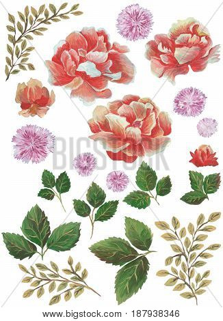 Modern watercolor flowers with a wide range of style and design.