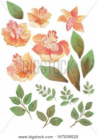 Watercolor painted collection. Excellent Watercolor Flowers Elements for invitation, wedding or greeting cards