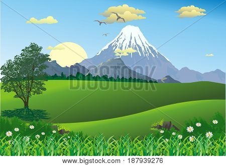 Landscape - Mountain range on the horizon. Tree in the meadow. Sunrise. Morning in the desert. Vector illustration