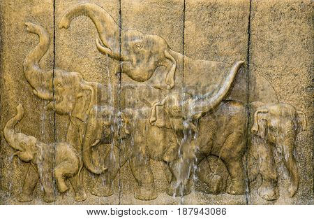 stone wall elephants carved with green plant