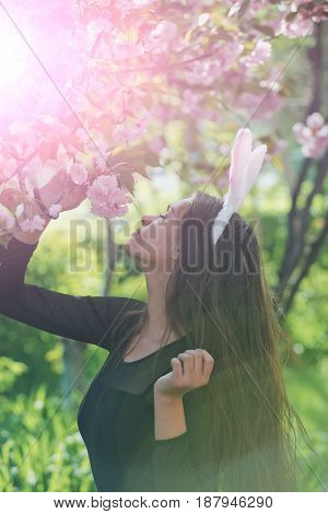 Bunny Ears On Girl With Spring Sakura Flowers