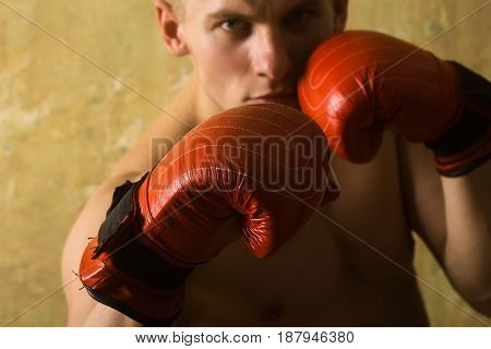 Boxer, Man, With Naked Chest In Red, Punching Gloves