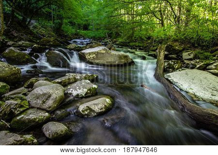 Smoky Mountain Stream. Smoky Mountain stream rushes through the lush forest of the Great Smoky Mountains National Park along the Little River Road