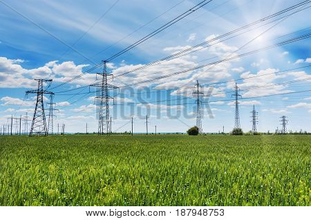 a high voltage power pylons in the green wheat field