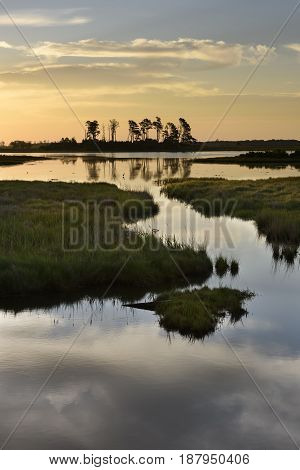 Clouds Reflecting in Pond Along Virginia Coast