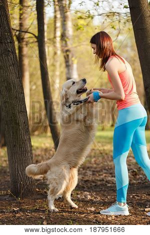 Sports girl with golden retriever in park on walk