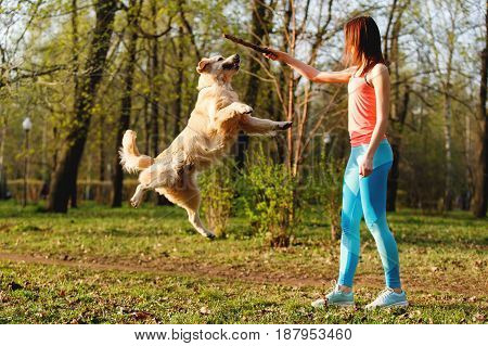 Girl playing with stick and dog in park during day