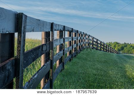 Grassy Hill Cut by Black Fence in early summer