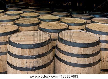 Group of Standing Bourbon Barrelsi n Storage