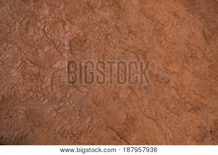 Hiker Footprints in the Red Mud Background