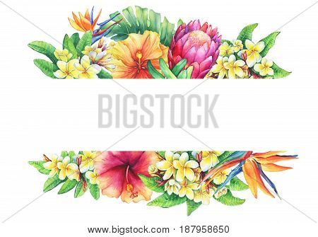 Banner with branches purple protea, plumeria, strelitzia and hibiscus tropical flowers. Horizontal border. Hand drawn watercolor painting on white background.