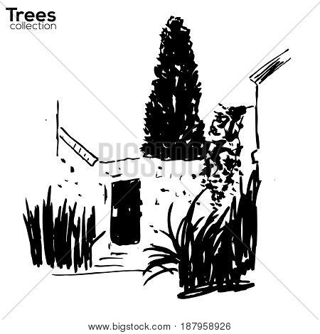 Vector Trees collection. Ink sketched landscape with old wall, door and plants