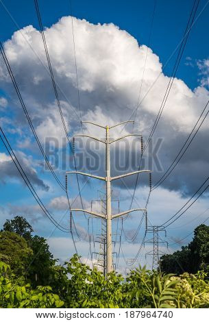 Vertical photo of power lines and tower against a blue sky with large white and grey clouds and green trees and bushes in the lower part of the frame