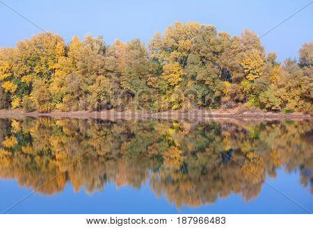 landscape with trees and reflection in the lake water