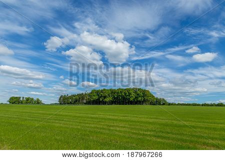 Spectacular Landscape Photography Of A Paradisaical Green Meadow With A Small Forest On The Center A