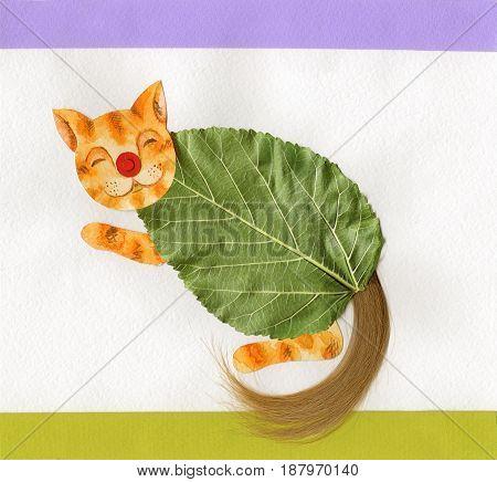 little kitten summer abstrackt funny postcard collage