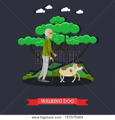 Vector illustration of elderly man with walking cane walking dog. Senior gentleman with his pet flat style design element.