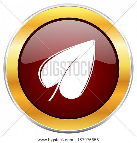 Leaf red web icon with golden border isolated on white background. Round glossy button.