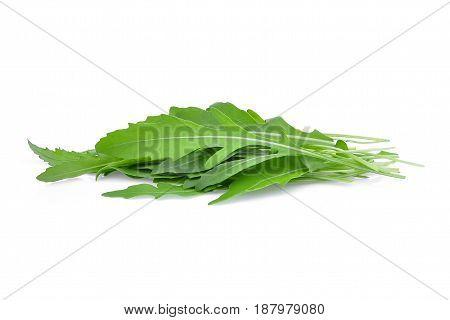 pile of wild rocket leaves(Arugula) isolated on white backbground