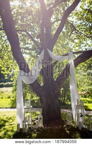 Wedding arch with white curtain overgrown with ivy and decorated with flowers in jars and lights. Wedding rustic photozone in the park