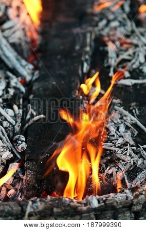 Hot fire and bright flames of the flame of an open wood fire