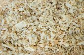 some wood chip bedding for a pet poster