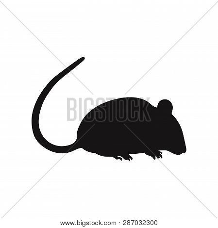 Rat Icon Isolated On White Background. Rat Icon In Trendy Design Style. Rat Vector Icon Modern And S