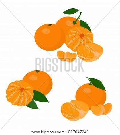 Mandarines, Tangerine, Clementine With Leaves Isolated On White Background. Citrus Fruit. Vector Ill