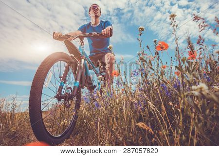 Young bicyclist rides on poppy field at sunset. Sport. Active lifestyle poster