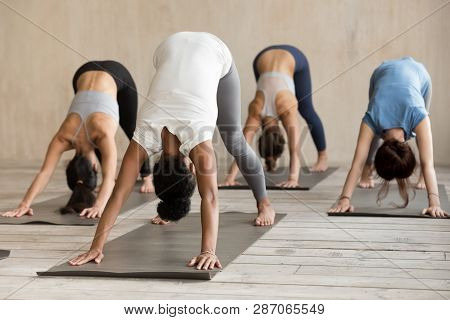 Group Of People Practicing Yoga Lesson, Adho Mukha Svanasana Exercise
