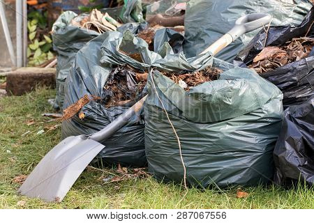 Garden waste. Brown leaves and rubbish collected from a gardening tidy up. Spade over sacks of garden refuse on a lawn. poster