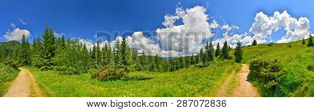 Summer Countryside. Summer Mountains With Conifer Forest