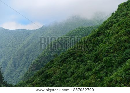 Forested Mountains In A Fog. View From Balcoes Viewpoint In Ribeiro Frio On Portuguese Island Of Mad