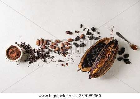 Variety Of Fresh And Dry Cocoa Beans From Cocoa Pod With Chopped Dark Chocolate And Cocoa Powder Ove