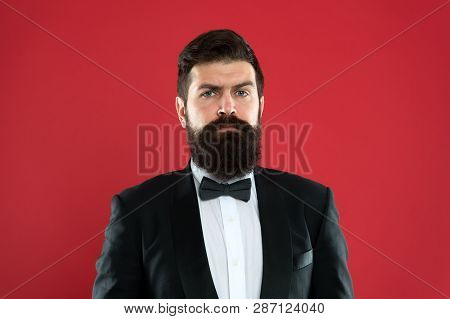 Bearded Man In Tuxedo And Bow Tie. Formal Event. Bearded Man Groom With Beard In Wedding Suit. Busin