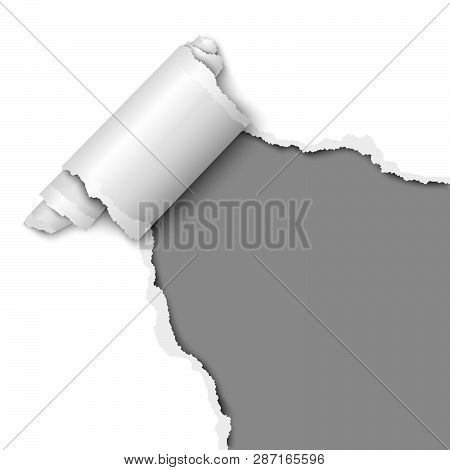 Torn Hole Of Lower Right Corner Of The White Sheet Of Paper With Paper Curl. Vector Template Paper D