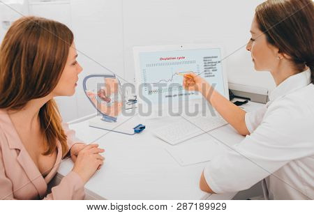 Patient Consults With Her Fertility Specialist And Looking To The Basal Body Temperature And Determi