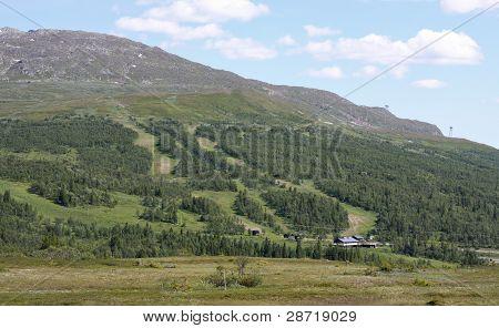 Summertime Skiing Slope