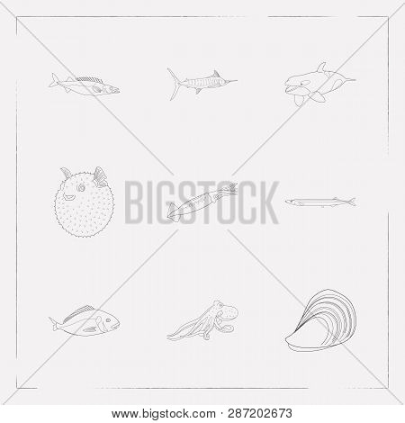 Set Of Seafood Icons Line Style Symbols With Mussel, Puffer Fish, Saury And Other Icons For Your Web